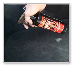 wolfgang carpet upholstery restorer removes tough stains from carpet and seats water based. Black Bedroom Furniture Sets. Home Design Ideas